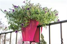 Buyers' guide - pots and containers