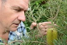 Chris Clennett leaves Kew's Wakehurst Place garden after 30 years
