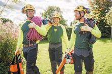 Arboriculture Sector in 2021 - Preview