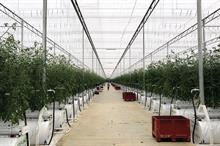 What benefits are the latest advanced controlled-environment structures delivering for growers?