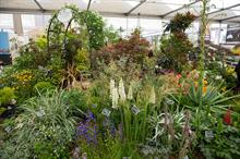 RHS Chelsea Flower Show 2018 takes shape with new layout