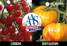 FloraHolland and All-American Selection best plant prizes awarded