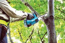 What is driving growth in chainsaw sales?