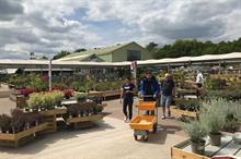 Two-thirds of retailers importing more plants as call for Government support renewed