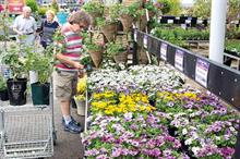 Should garden centres try and appeal more to older people?