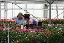 Horticulture students invited to apply for David Colegrave Scholarship worth £2500