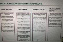AIPH presents Preparing for Brexit – exporting and importing cut flowers