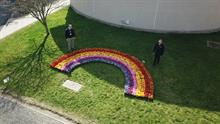 Bedding flower rainbow idea moves to hospital grounds to support coronavirus care
