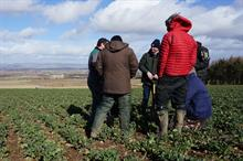 Scottish farmers explore sustainable methods of restoring soil health