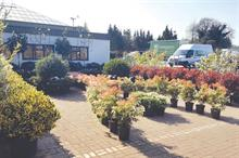 Evergreen Exterior Services sees sales success across the board and no problems with post-Brexit plant imports