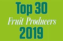 Top 30 UK Fruit Producers combined turnover shows strong increase despite Brexit and labour supply concerns