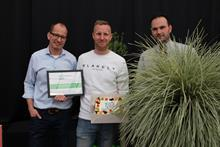 Lomandra longifolia White Sands wins best novelty at Groen-Direkt