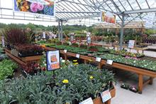 How will buying group Choice Marketing grow its garden centre membership?