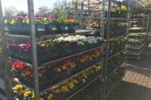 Garden centre EPOS data for May: top departments, plant categories by profitability revealed