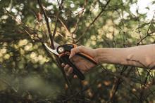 Fiskars cuts plastic packaging on garden tools