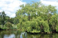 Horticulture Week Custodian Award - Best Parks Partnership - Commercial
