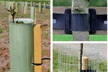 How to buy - tree stakes and ties