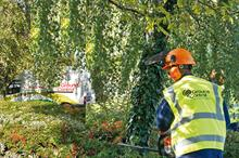 Top 70 UK Landscape and Maintenance Contractors 2021: 1 - 10
