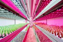 Signify's expanded GrowWise Control System helps growers boost operational efficiencies