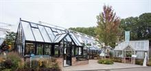 Hartley Botanic wins five stars at RHS Chelsea Flower Show