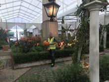11 nurseries and gardens supply Villaggio Verde's Monument piazza at RHS Chelsea Flower Show