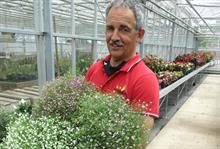New plants from Salata on show at Pershore College
