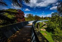 Forestry England reopening Westonbirt Arboretum on 3 June