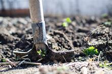 Landscaping company reaps the benefits of going paperless