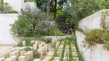 Ten RHS Chelsea Flower Show gardens expected to be revealed this month