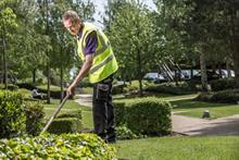 Mitie Landscapes wins contract extension with key client Whitbread