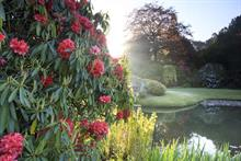 National Trust: Do you have the vision to transform our outdoor spaces for the future?