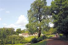 Decision due on pioneering Newcastle parks trust model proposal