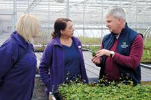Horticulture Week Business Award - Nursery Stock Grower of the Year