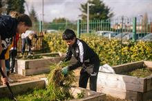 Nature-based outdoor learning key to re-engaging disadvantaged pupils
