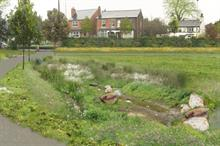 Environmental collaboration completes natural flood defences in Salford