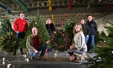 Prime minister's Christmas tree grower named
