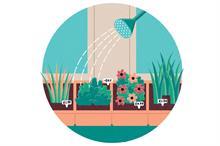 Career profile - Planteria Manager