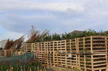 Johnsons of Whixley halts nursery shipments to Northern Ireland
