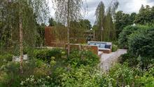 RHS Hampton Court plant supplier overcomes challenges