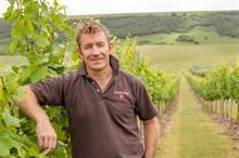 What should be done to ensure sustainable growth in English wine?
