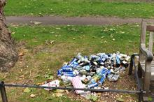 Increased littering and anti-social behaviour taking a toll on park finances, finds report