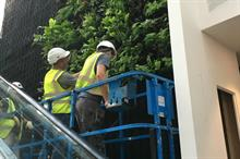 Scotscape delivers green wall at first new House of Fraser store in almost a decade