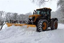 What business opportunities have the snow and ice presented for grounds maintenance firms?