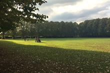 Study shows extent of austerity cuts to neighbourhood services including parks