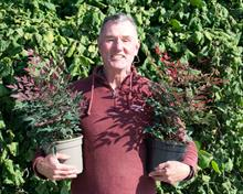 Wyevale Nurseries to introduce taupe recyclable pots