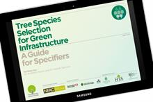 """Urban tree selection guide """"a significant step forward"""" for specifiers"""