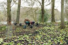 Horticulture Week Custodian Award - Best Gardens or Arboretum Team