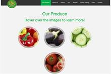 UK Salads publishes annual results - plus March Companies House round-up