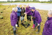 Horticulture Week Custodian Award - Best Volunteer Initiative