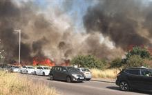 Wanstead Flats: Entire East London SSSI area damaged in grass fire